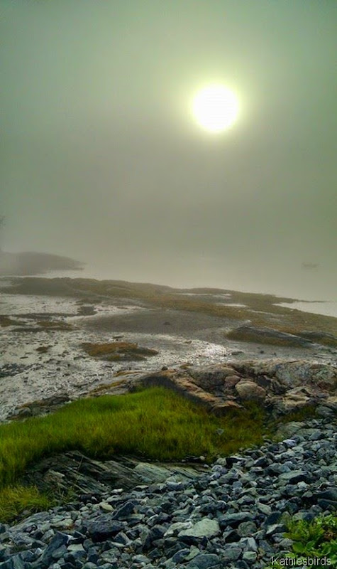6. foggy sunrise at mere point