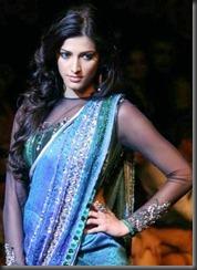 Shruthi_Haasan_in_Saree