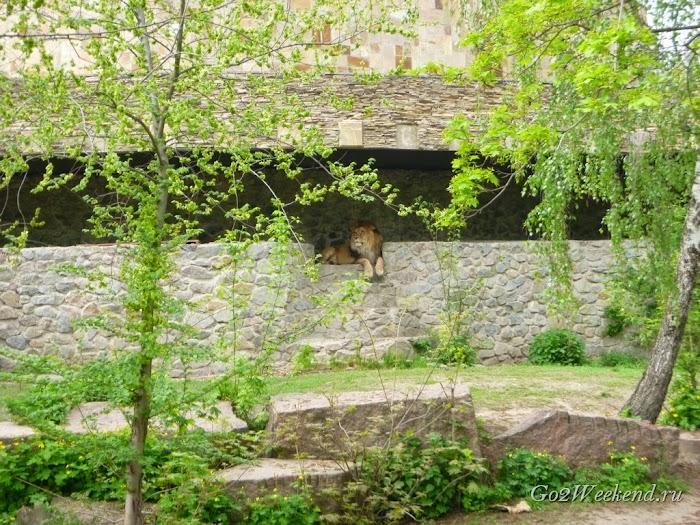 Kiev_Zoo_34.jpg
