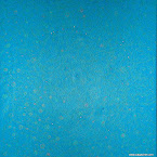 plancton 1.jpg