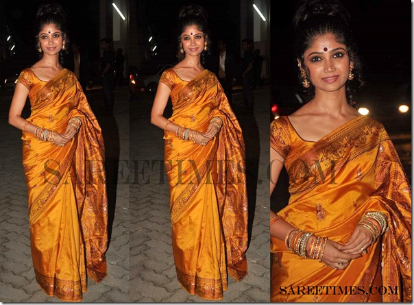 Designer_Saree_Telly_Chakkar_Awards_2011 (2)