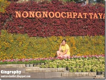 PattayaIMG_0846-20100215