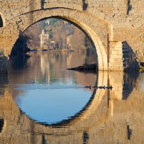 Pont Vieux by Paul Atkinson - Buildings & Architecture Bridges & Suspended Structures ( reflection, structure, winter, beziers, france, architecture, view, bridge, river )