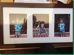 DAD frame 2013