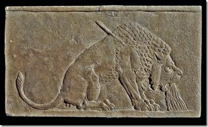 umierający lew (645)