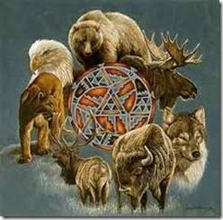 animais de poder 1
