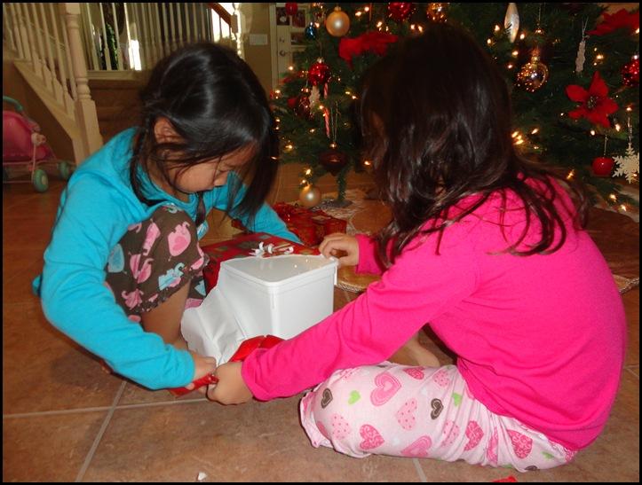 Christmas 2011 067