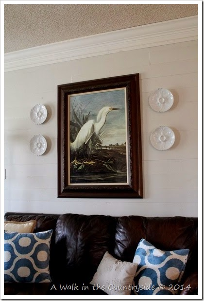 framed audubon poster from zazzle.com