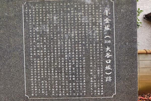 DSCF9676.JPG
