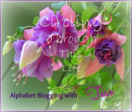 Circling Through This LIfe Alphabet Blogging