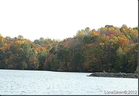 Ross_Lake7