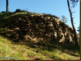 Tramo de muralla - Castillo de Monreal