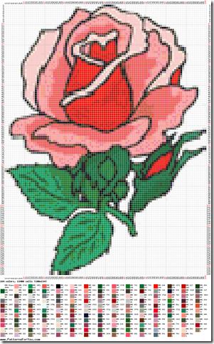 Ponto cruz graficos de rosas  4