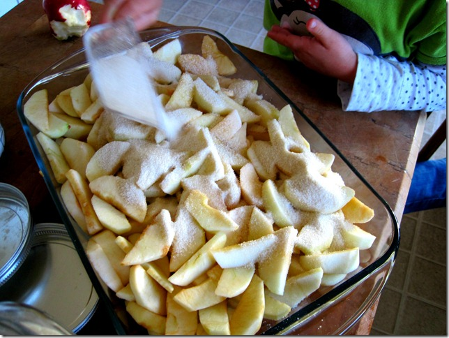apple crisp 3