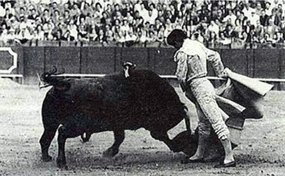 Curro torea