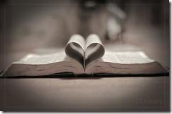 Heart Bible