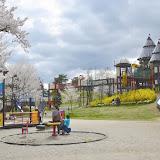 飯田市かざこし子どもの森公園の遊具