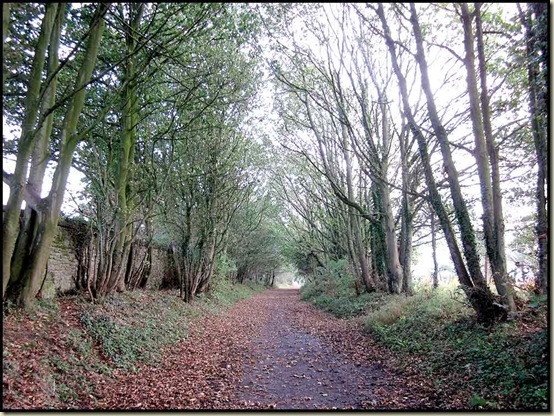 The disused railway line approaching Conder Green