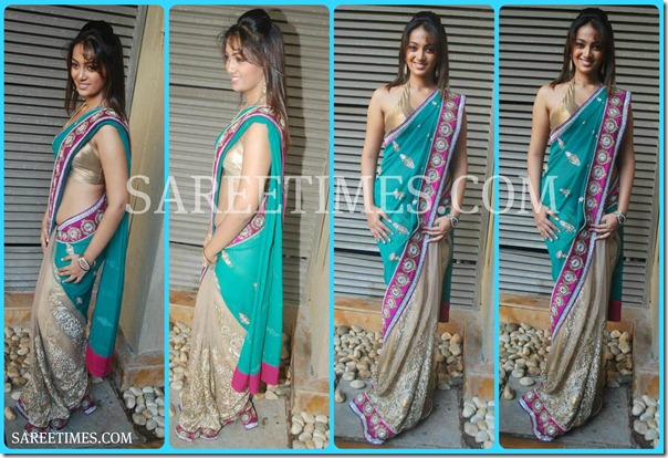 Riya_Sen_Embroidery_Saree
