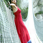 kajal-agarwal-wallpapers-38.jpg