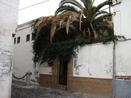 Albaicin Andaluzia
