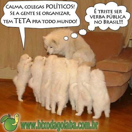 teta-verba-publica-brasil