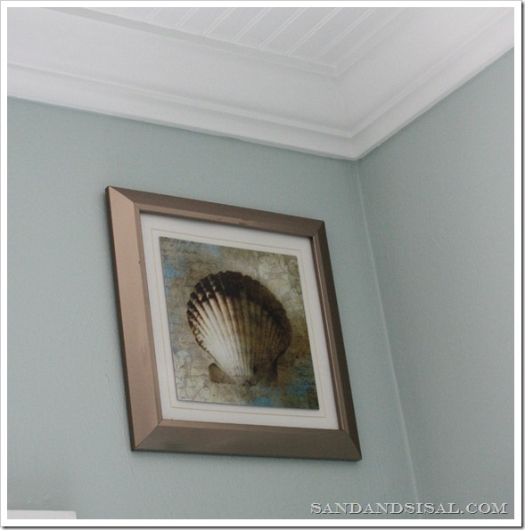 scallop framed art