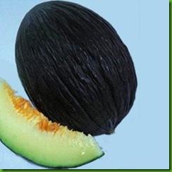 Melao Trendral Negro