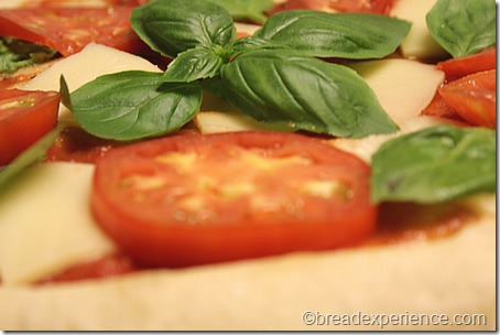 grilled-margherita-pizza6