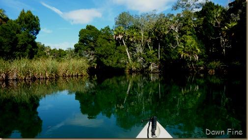 Chassahowitza River canoeing_111