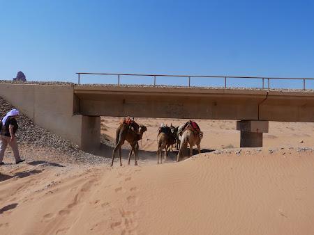 Imagini Wadi Rum: Pe sub podul de cale ferata