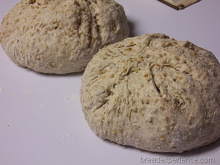 multigrain-spelt-bread-with-soaker 013