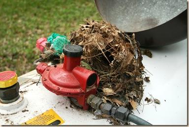nest on tank