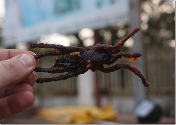 spider-food-cambodia-12