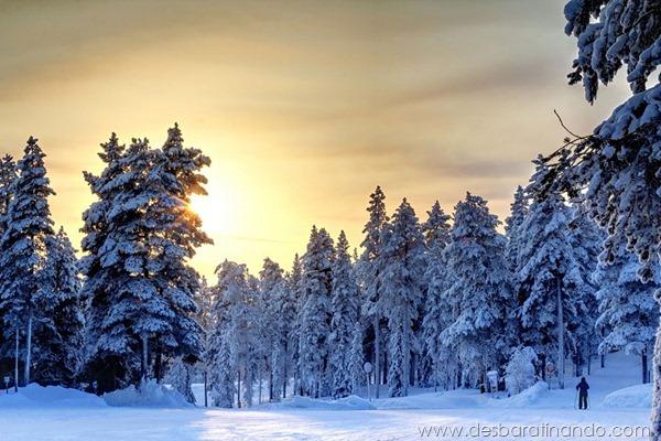 paisagens-de-inverno-winter-landscapes-desbaratinando (18)