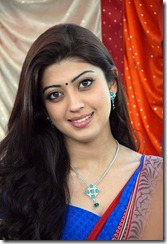 pranitha_latest_cute_pic_in_saree