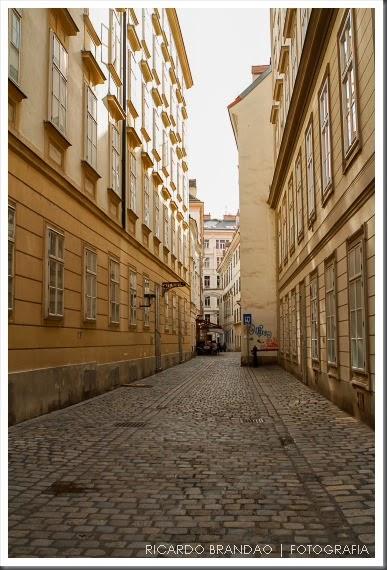 vienna city31-104