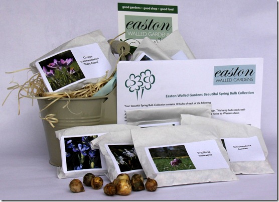 EWG bulb gift box 2012 (2).jpg document size