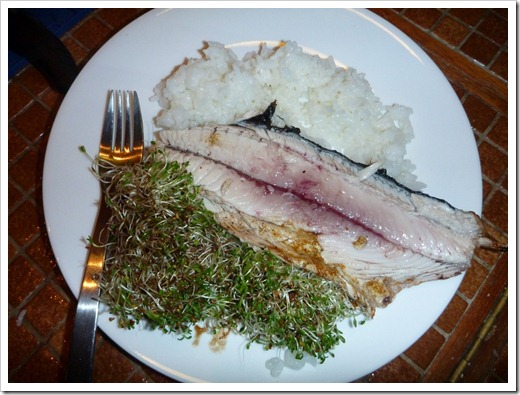 BBQd Bonito with fresh sprouts and rice