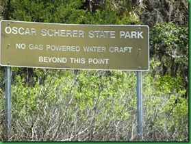 South Creek Kayak & Casey Key Beach 016