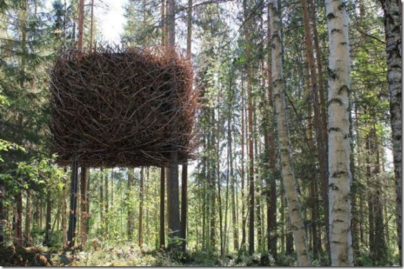 awesome-treehouses-2