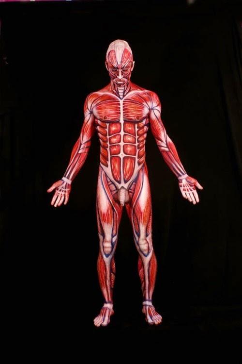 Arte corporal anatomia humana 01