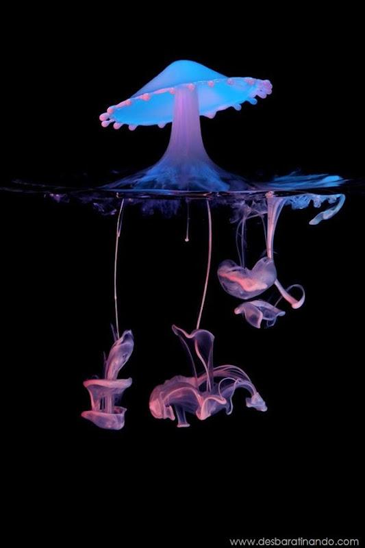 liquid-drop-art-gotas-caindo-foto-velocidade-hora-certa-desbaratinando (194)