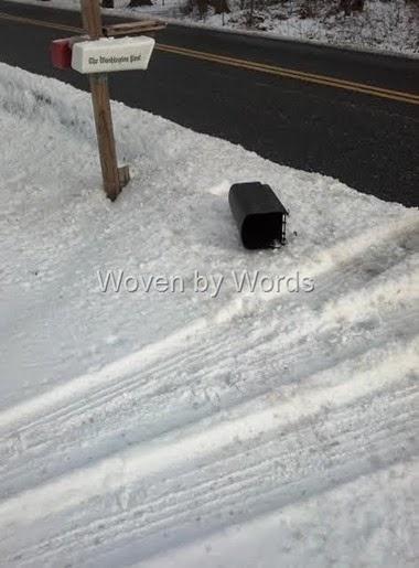 Snow Day[9]