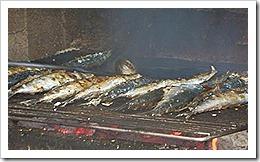 União Europeia é firme em directivas da sardinha assada.Mar.2013