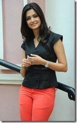 Actress Kriti Kharbanda at Ongole Gitta Movie Press Meet Stills