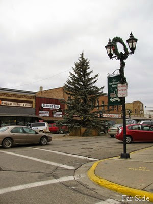Tree in 2009
