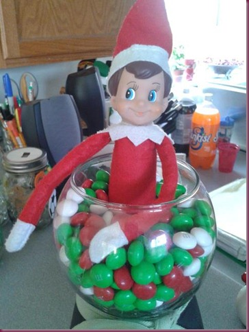 scout in candy jar