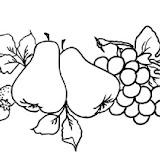 frutas2_medio.jpg