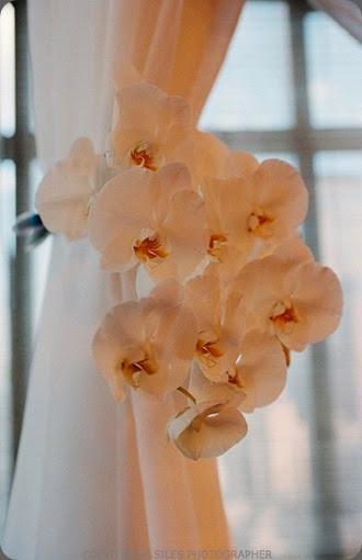 floral  tie backs tantawan1